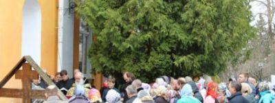Память Старца молитвой почтили в Ракитном