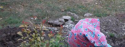 Дорогу к храму в Гостищево прихожане украсили цветущими кустами