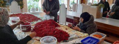 Урожай калины, облепихи, душицы, мяты собрали сёстры Богородице-Тихвинского женского монастыря