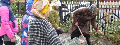 Акцию «Посади цветок» организовали в Воскресной группе храма Трех Святителей села Стригуны