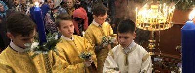 Богослужения праздника Рождества Христова прошли в храме святого апостола Иакова, брата Божия в Губкине