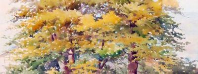 О выставке «Акварели Великой Княгини Ольги Александровны» в Белгороде рассказало «Столетие»