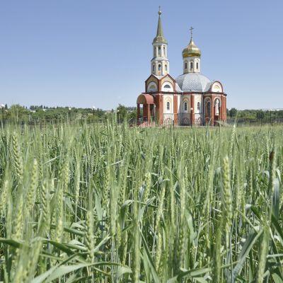 Храм Апостола и евангелиста Иоанна Богослова в селе Холодное