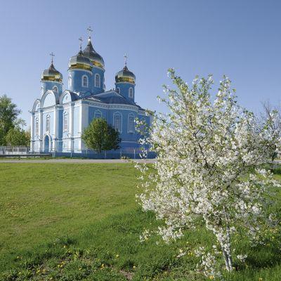 Храм Успения Пресвятой Богородицы в селе Алексеевка