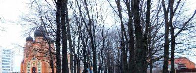 Аллея святых Петра и Февронии Муромских в Старом Осколе празднует день рождения