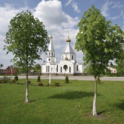 Храм Архистратига Михаила в селе Колотиловка