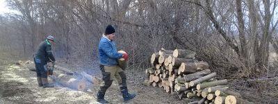 Казаки заготовили дрова для отопления казачьего войскового храма в селе Погромец
