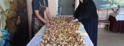 «Лесной десант» сестёр Богородице-Тихвинского женского монастыря собрал массу грибов для будущих постов